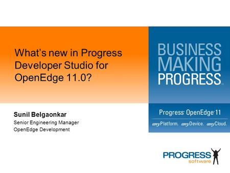 What's new in Progress Developer Studio for OpenEdge 11.0?