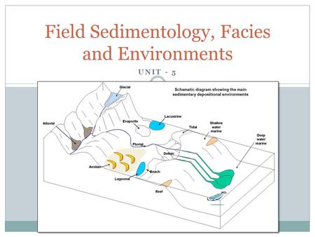 Field Sedimentology, Facies and Environments