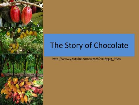 The Story of Chocolate http://www.youtube.com/watch?v=lZygrg_PF2A.