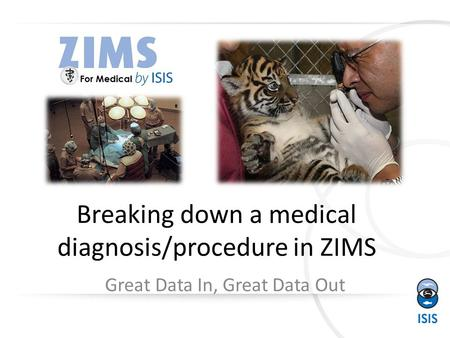 Breaking down a medical diagnosis/procedure in ZIMS Great Data In, Great Data Out.