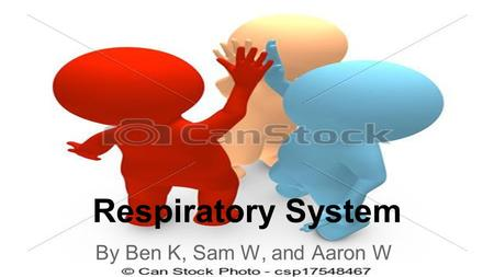 Respiratory System By Ben K, Sam W, and Aaron W.