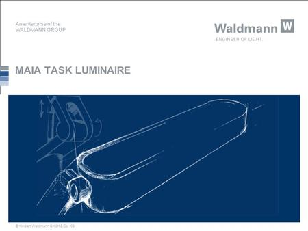 An enterprise of the WALDMANN GROUP © Herbert Waldmann GmbH & Co. KG MAIA TASK LUMINAIRE.