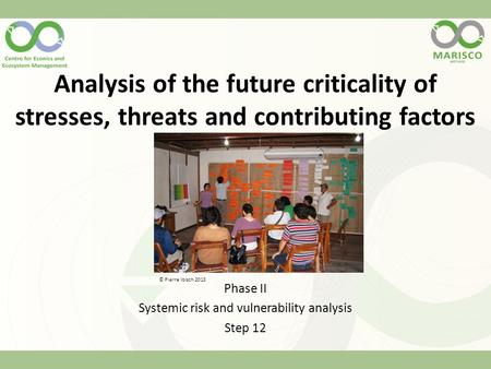Analysis of the future criticality of stresses, threats and contributing factors Phase II Systemic risk and vulnerability analysis Step 12 © Pierre Ibisch.