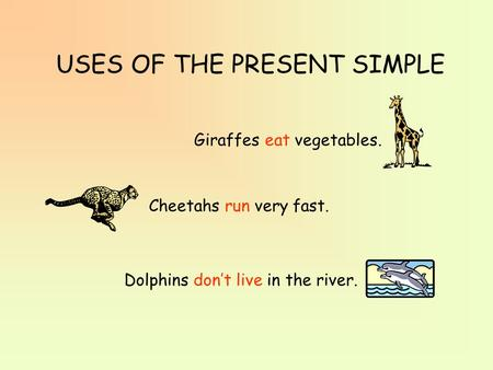 USES OF THE PRESENT SIMPLE Giraffes eat vegetables. Cheetahs run very fast. Dolphins don't live in the river.
