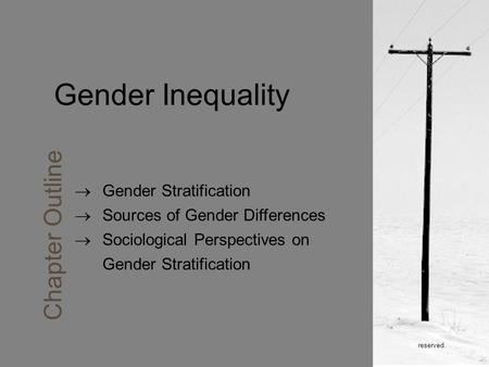Reserved. Gender Inequality Chapter Outline  Gender Stratification  Sources of Gender Differences  Sociological Perspectives on Gender Stratification.
