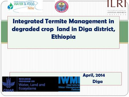 April, 2014 Diga Integrated Termite Management in degraded crop land in Diga district, Ethiopia.