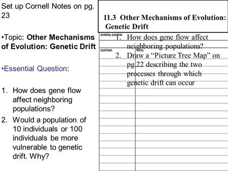 Set up Cornell Notes on pg. 23 Topic: Other Mechanisms of Evolution: Genetic Drift Essential Question: 1.How does gene flow affect neighboring populations?