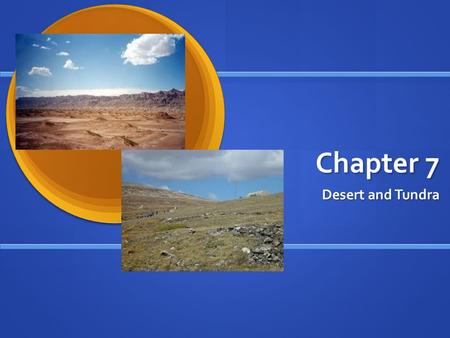 Chapter 7 Desert and Tundra. DESERTS RECEIVE LITTLE RAIN – 10-25 cm per year RECEIVE LITTLE RAIN – 10-25 cm per year SOIL IS RICH IN MINERALS – but poor.