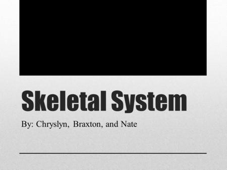 Skeletal System By: Chryslyn, Braxton, and Nate. What is the Skeletal System The skeletal system protects and supports an organism's body, while also.