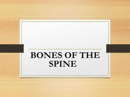 BONES OF THE SPINE. Introductory Information 33 The spine is a stack of 33 bones called vertebra held together by ligaments and muscles. disc Between.