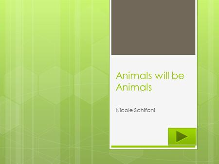 Animals will be Animals Nicole Schifani. Content Area: Science Grade Level : 2nd Summary: The purpose of this PowerPoint is to show animals eat plants.