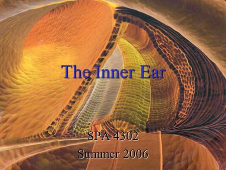 The Inner Ear SPA 4302 Summer 2006. Two Halves: ____________--transduces motion and pull of gravity ____________-transduces sound energy (Both use Hair.