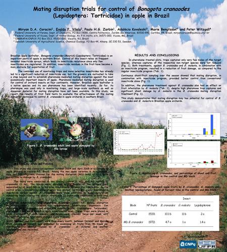Mating disruption trials for control of Bonagota cranaodes (Lepidoptera: Tortricidae) in apple in Brazil Miryan D.A. Coracini 1, Evaldo F. Vilela 2, Paulo.