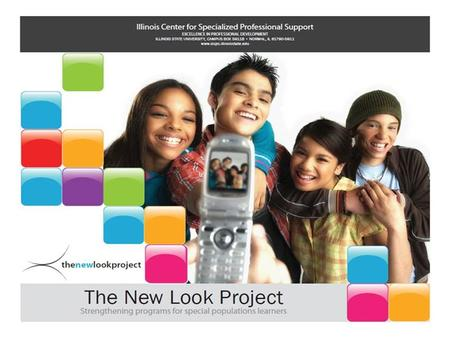 FY13 New Look Informational Webinar August 23, 2012 1-2pm Lynn Reha Director, Illinois Center for Specialized Professional Support This presentation was.