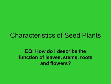 Characteristics of Seed Plants EQ: How do I describe the function of leaves, stems, roots and flowers?