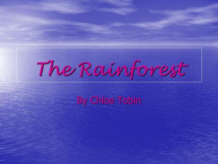 The Rainforest By Chloe Tobin.