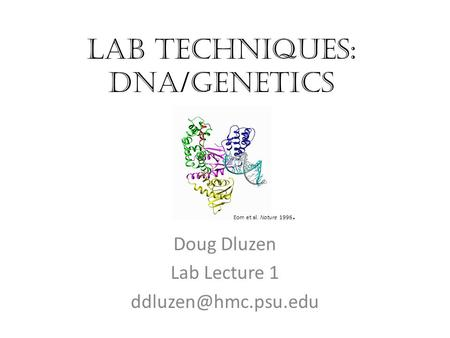 Lab Techniques: DNA/Genetics Doug Dluzen Lab Lecture 1 Eom et al. Nature 1996.
