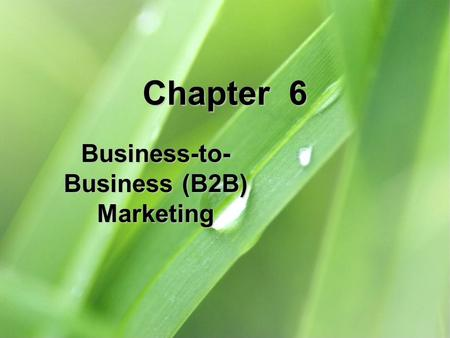 Chapter 6 Business-to- Business (B2B) Marketing. 6-2 Chapter Objectives 1.Explain each of the components of the business-to- (B2B) market. 2.Describe.