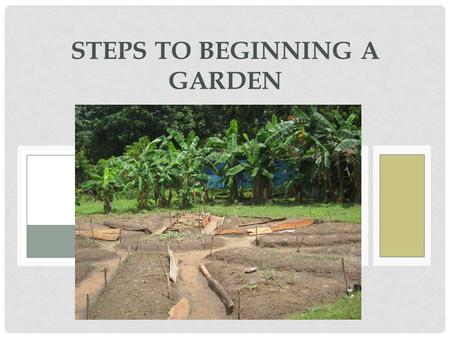 STEPS TO BEGINNING A GARDEN. GET AN IDEA Is it going to be a vegetable garden? An herb garden? A flower garden? Or a mix? How much space do you have?