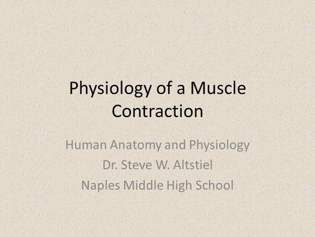 Physiology of a Muscle Contraction Human Anatomy and Physiology Dr. Steve W. Altstiel Naples Middle High School.