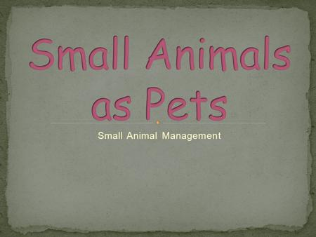 animals as pets essay Pet essays are written by many little boys and girls in schools some of these essays are even entitled as my pet essay pets essay is something that many children as well as pet lovers like to write just for fun or for the purpose of writing an article in school.