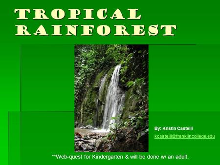 Tropical Rainforest **Web-quest for Kindergarten & will be done w/ an adult. By: Kristin Castelli
