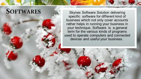 S OFTWARES Skynes Software Solution delivering specific software for different kind of business which not only cover accounts rather helps in running your.