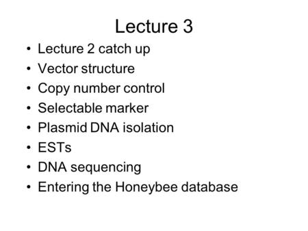 Lecture 3 Lecture 2 catch up Vector structure Copy number control Selectable marker Plasmid DNA isolation ESTs DNA sequencing Entering the Honeybee database.