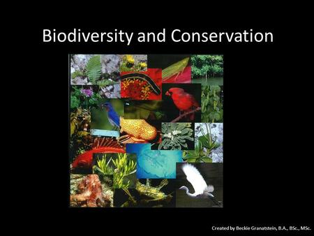 Biodiversity and Conservation Created by Beckie Granatstein, B.A., BSc., MSc.