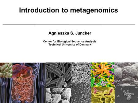 Introduction to metagenomics Agnieszka S. Juncker Center for Biological Sequence Analysis Technical University of Denmark.