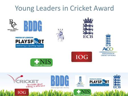 Developing Cricket in Bromley Young Leaders in Cricket Award.