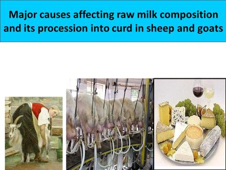 Major causes affecting raw milk composition and its procession into curd in sheep and goats.