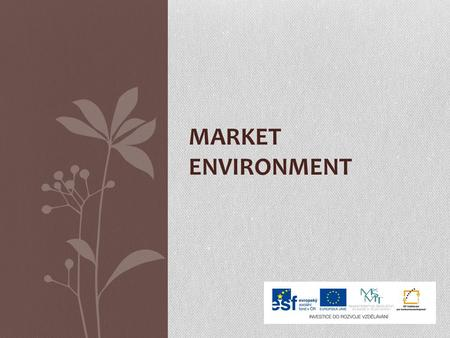 MARKET ENVIRONMENT. Managers´ important task is to know the market environment If the managers want to plan well, they must know the environment where.