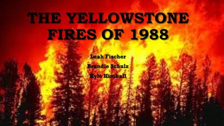 THE YELLOWSTONE FIRES OF 1988 Leah Fischer Brandie Schulz Kyle Kimball.