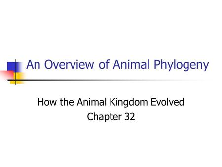 An Overview of Animal Phylogeny How the Animal Kingdom Evolved Chapter 32.