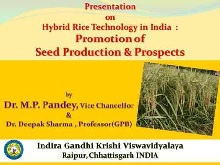 Presentationon Hybrid Rice Technology in India : Promotion of Seed Production & Prospects.