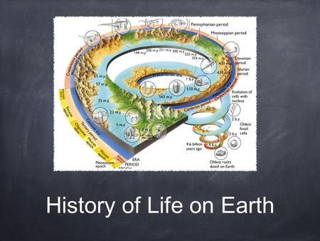 History of Life on Earth. Objectives Summarize how radioisotopes can be used to determine the age of the earth Compare two models that describe how the.