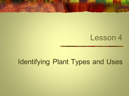 Lesson 4 Identifying Plant Types and Uses. Next Generation Science/Common Core Standards Addressed! RST.11 ‐ 12.1 Cite specific textual evidence to support.