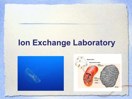 Ion Exchange Laboratory. Pre-Lab Discussion Outline Column chromatography –Types and principles –Focus on: ion exchange chromatography Ion exchange experiment.