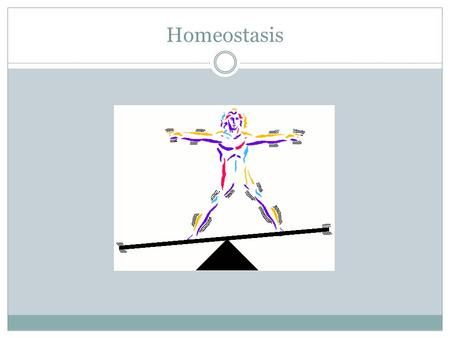 Homeostasis. Homeostasis is the maintenance of a stable internal environment.stable internal environment.