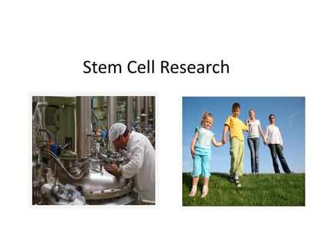 Stem Cell Research. What are the purposes of stem cells? Inject stem cells into damaged tissue areas and stem cells regenerate damaged areas Being proposed.