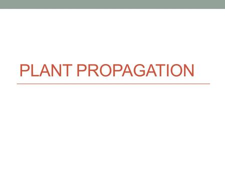 PLANT PROPAGATION Propagation The multiplication of a kind or species. Reproduction of a species.