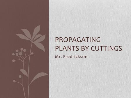 Mr. Fredrickson PROPAGATING PLANTS BY CUTTINGS. What are the reasons for propagating plants asexually?