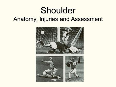 Shoulder Anatomy, Injuries and Assessment. Rotator Cuff Muscles Supraspinatus Infraspinatus Teres Minor Subscapularis.
