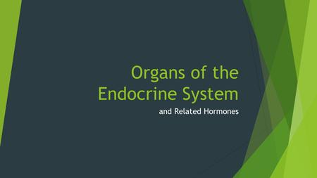 Organs of the Endocrine System