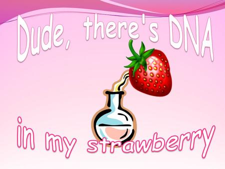 Dude, there's DNA in my strawberry.