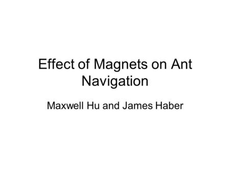 Effect of Magnets on Ant Navigation Maxwell Hu and James Haber.