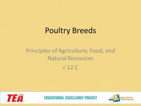 Poultry Breeds Principles of Agriculture, Food, and Natural Resources c 12 C.