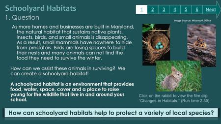 1. Question As more homes and businesses are built in Maryland, the natural habitat that sustains native plants, insects, birds, and small animals is disappearing.
