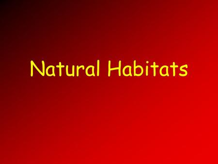Natural Habitats. Outline Populations and Communities Ecosystems Biotic and Abiotic Factors Biomes Biomes of the World Wetlands Natural Environmental.